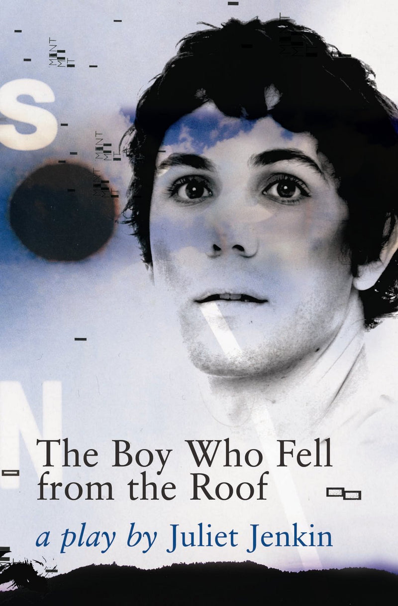 THE BOY WHO FELL FROM THE ROOF