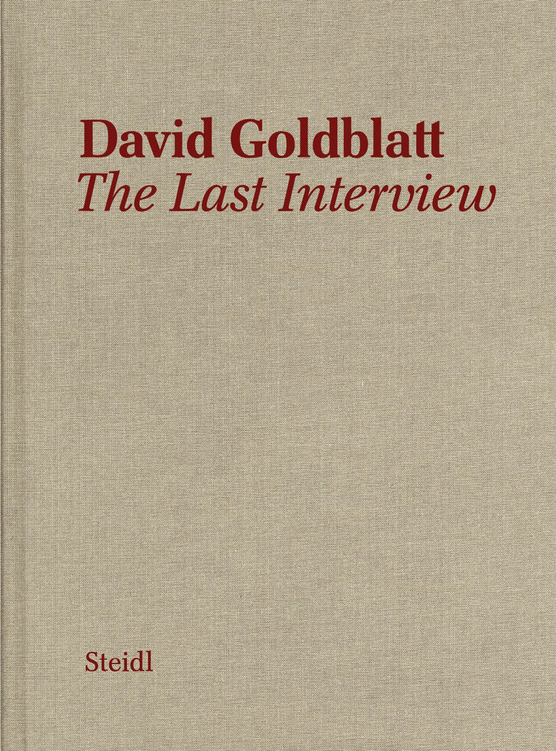DAVID GOLDBLATT, the last interview, interview and text by Alexandra Dodd