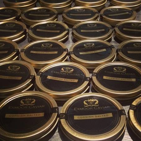 Exmoor Caviar (Various Sizes) - Haar at Home