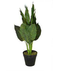 Urban Decor Pot Plant