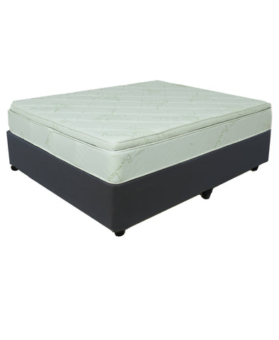 Creative Bamboo Pillow Top Queen Bed (On Promo)