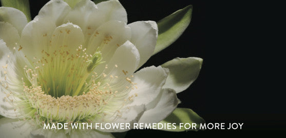 Wei Joyful night blooming cereus flower remedy