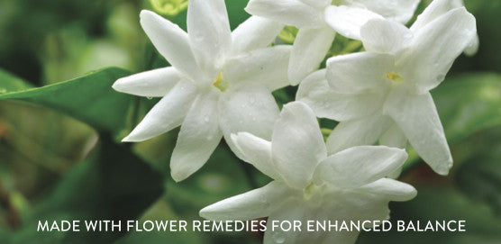 Wei Radiant jasmine flower remedy