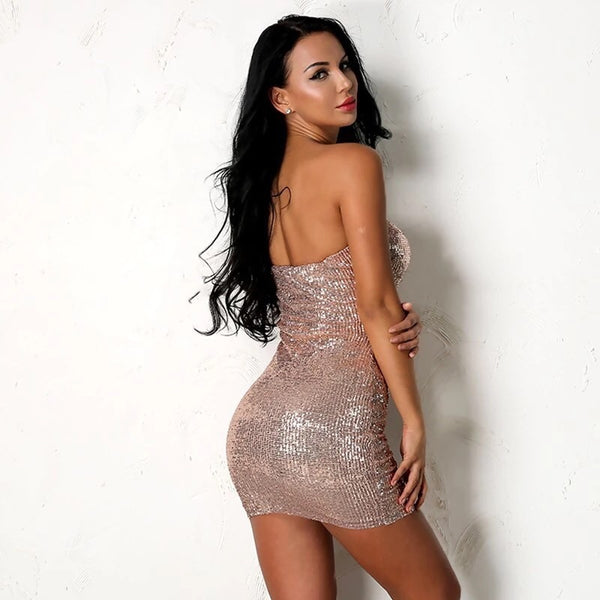 Vanessa Sequin Dress