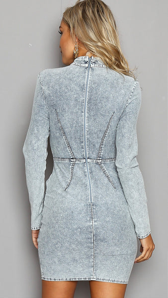 Paris Denim Dress
