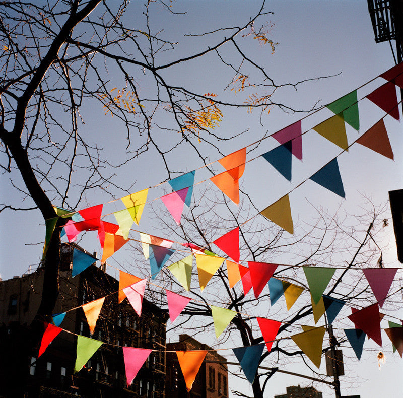 Winter Flags (East Village, New York)