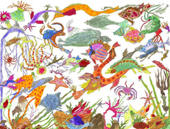 EMPATHIC INVENTORY (Sea Creatures 2010)