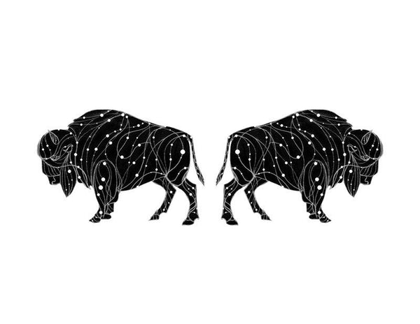 The Bison Constellation