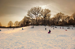 The Sledding Hill (Dusk)