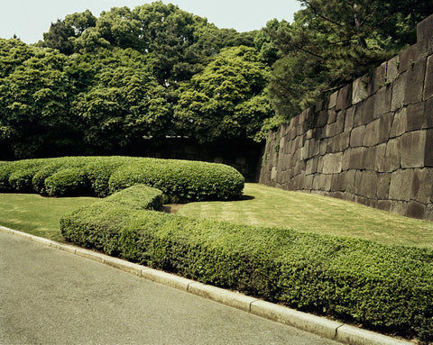 Imperial Palace Gardens with Wall, Tokyo