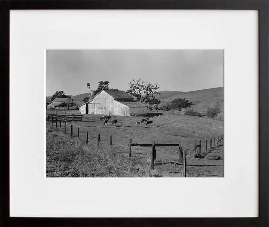Small Farm of California, Contra Costa County