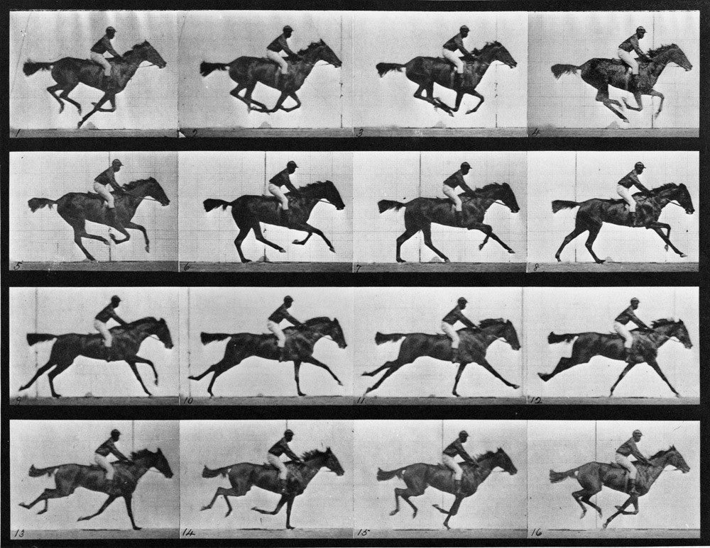 Animal Locomotion Plate 626 Galloping Horse 20x200