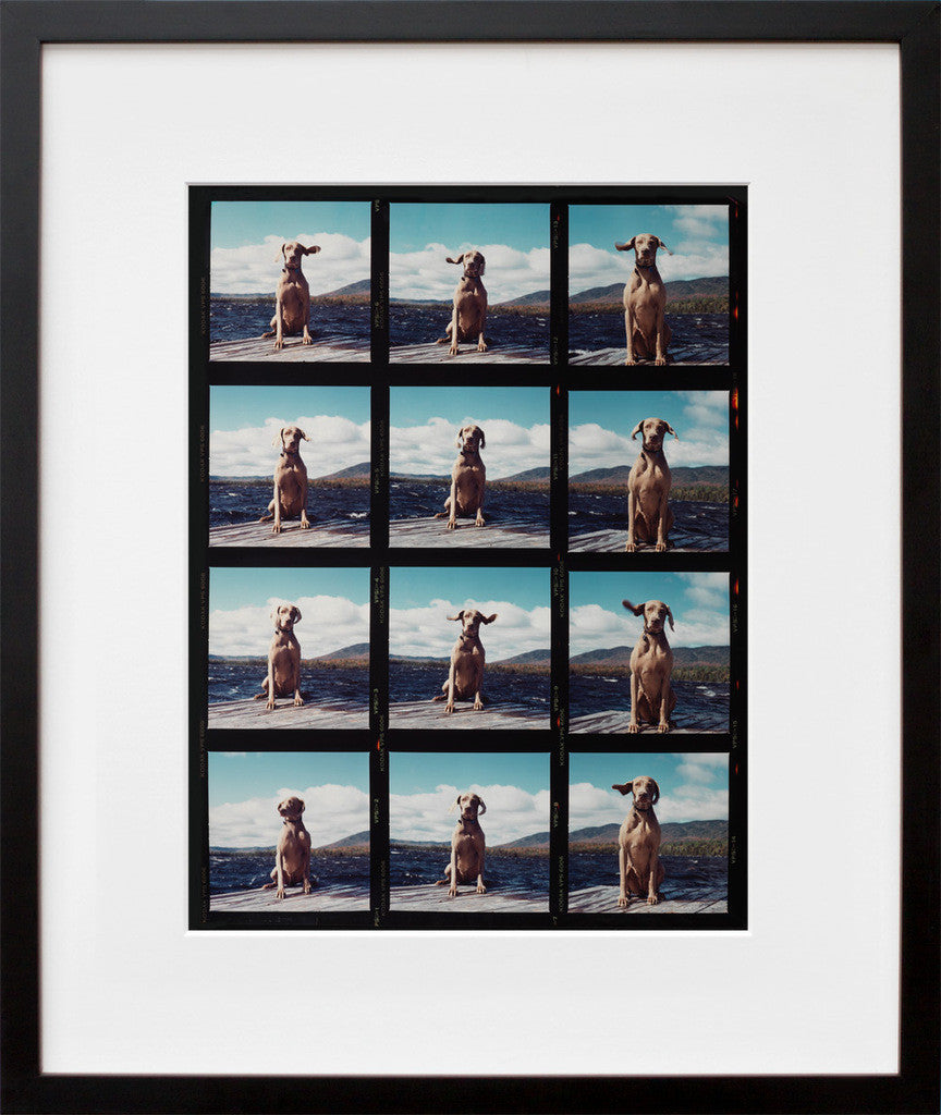 Fay on the Dock (Framed + Ready to Ship)