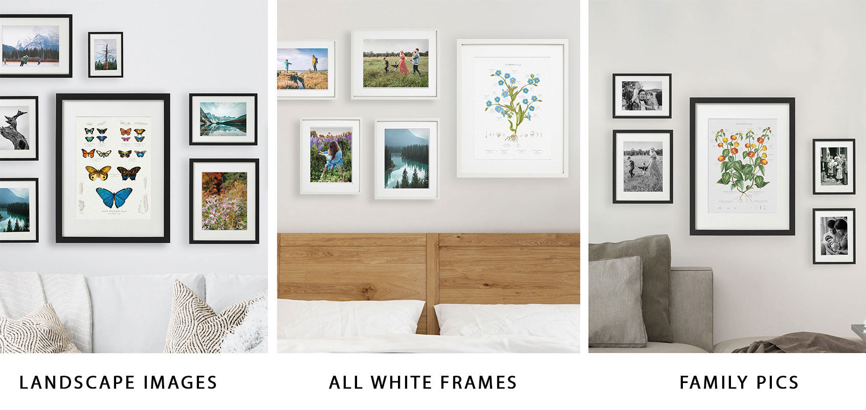 Gallery Wall with Landscape Images Family Photos