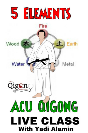 Acu Qigong 5 elements (Digital Download) - Charlotte Reflexology