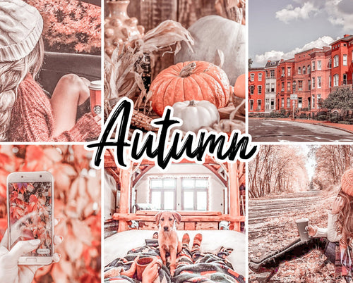 20 Autumn Mobile/ Desktop Collection - Magic Preset Filters