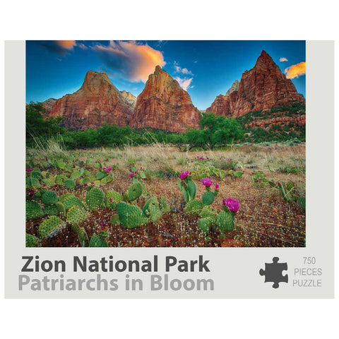 Zion Puzzle - Patriarchs in Bloom 750
