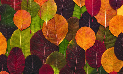Leaves Galore Vinyl Kitchen Mat
