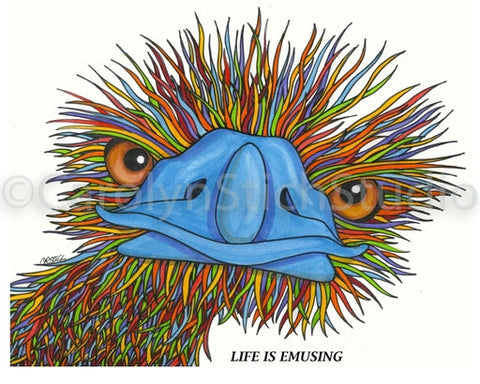 Life is Emusing, rug hooking pattern