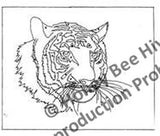 P723: Tiger - Tiger, Offered by Honey Bee Hive