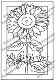 PR1444: Sunflower, Offered by Honey Bee Hive