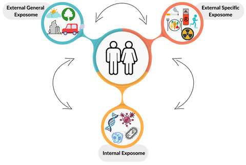 The Exposome Concept