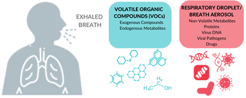 Biomarkers on breath include volatile organic compounds (VOCs) and respiratory droplets