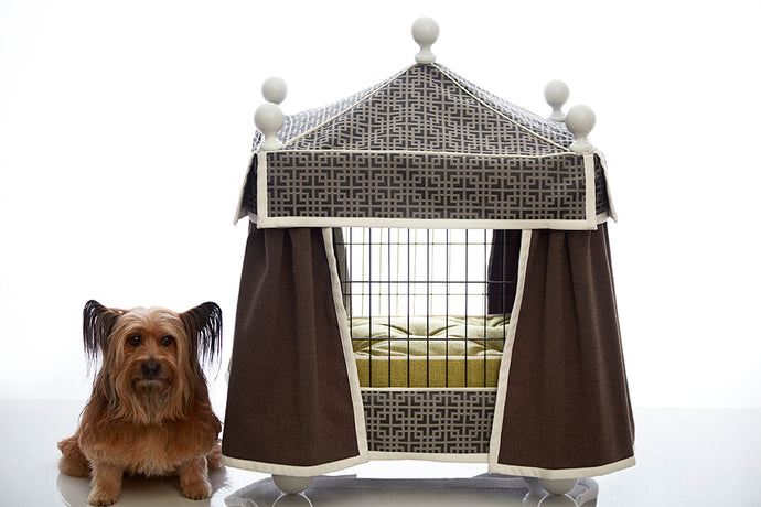 Pooch Palace: Haute Canine