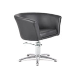 Hair Salon Styling Chair - Indo