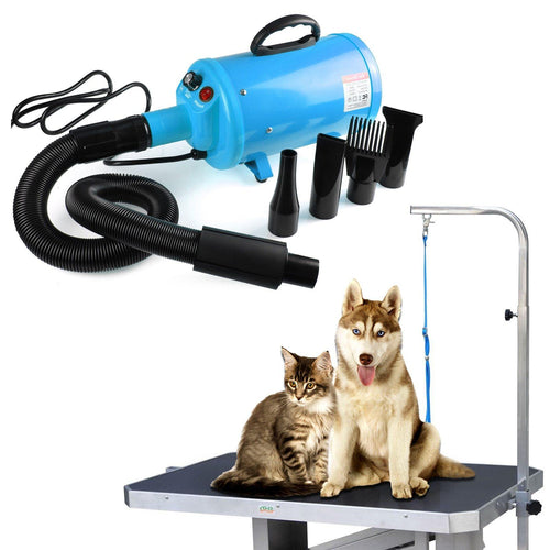 Pet hair Dryer With Heater US for blowing cat and dog fur 🐈🐩🦁 - PupiPlace