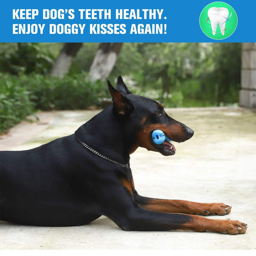 The dog tooth brush for dental care 🦷🐕‍🦺🐶🐾 - PupiPlace