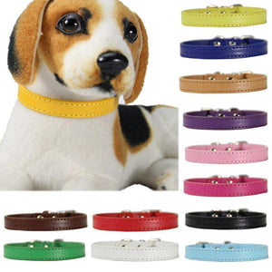 PU Leather color dog collars ❤️🧡💛🐶💜💚💙 - PupiPlace