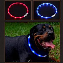 Load image into Gallery viewer, USB LED dog flashing collars 🐾🐶🖲⚡️🔥 - PupiPlace