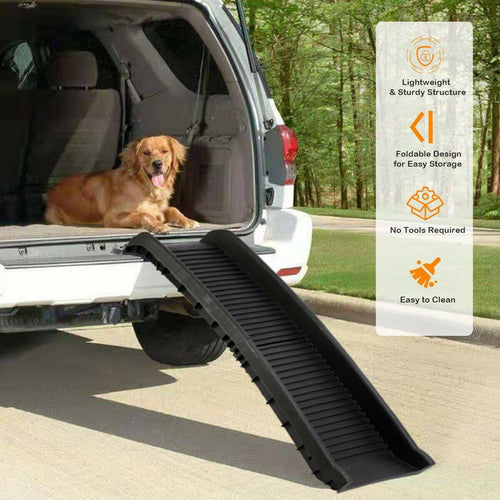 dog car ramp
