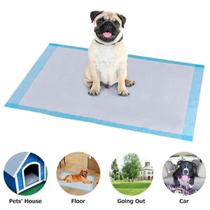 Non-woven pee piddle pads for pets : solution when your dog or cat peeing everywhere 🐶🙀🧼😳 - PupiPlace