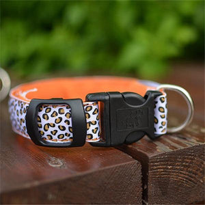 The leopard dog led collar 🐯🐶🔥 - PupiPlace