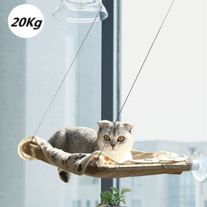 Outstanding magic cat hammock 😻🏡🐱🐈 - PupiPlace