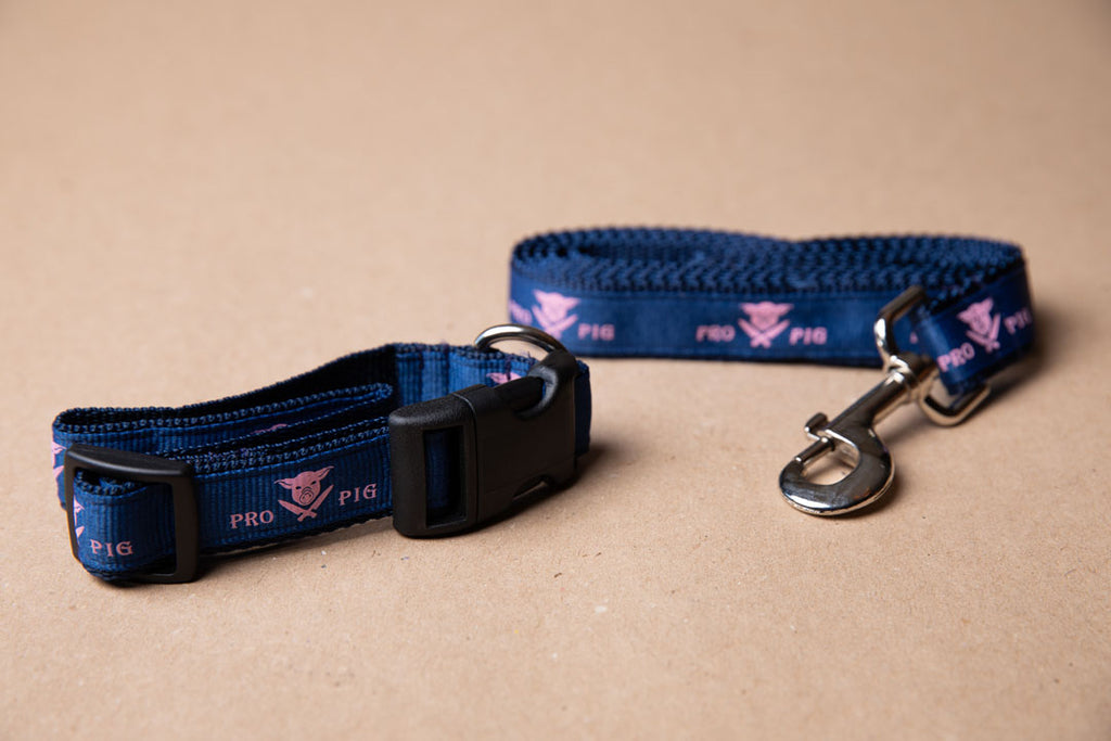 Dog Collar & Leash Combo