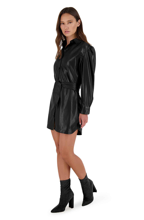 Faux Nelly Vegan Leather Dress - Traveling Chic Boutique, VA