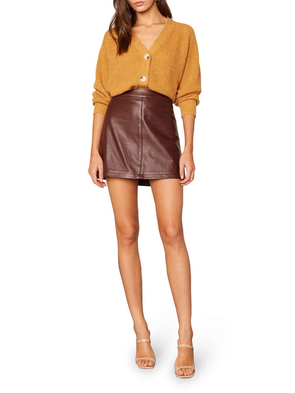 Marrie Leather Mini Skirt - Traveling Chic Boutique, VA