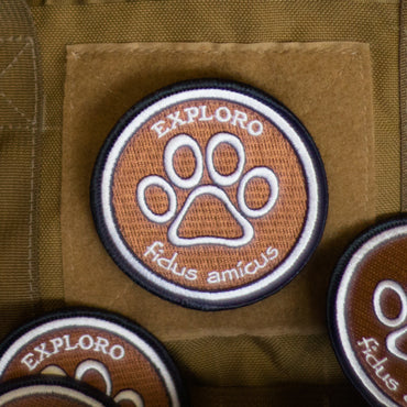 Loyal Friend Morale Patch