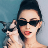 2019 New Fashion Cute Sexy Ladies Cat Eye Sunglasses For Women-SunglassesCraft