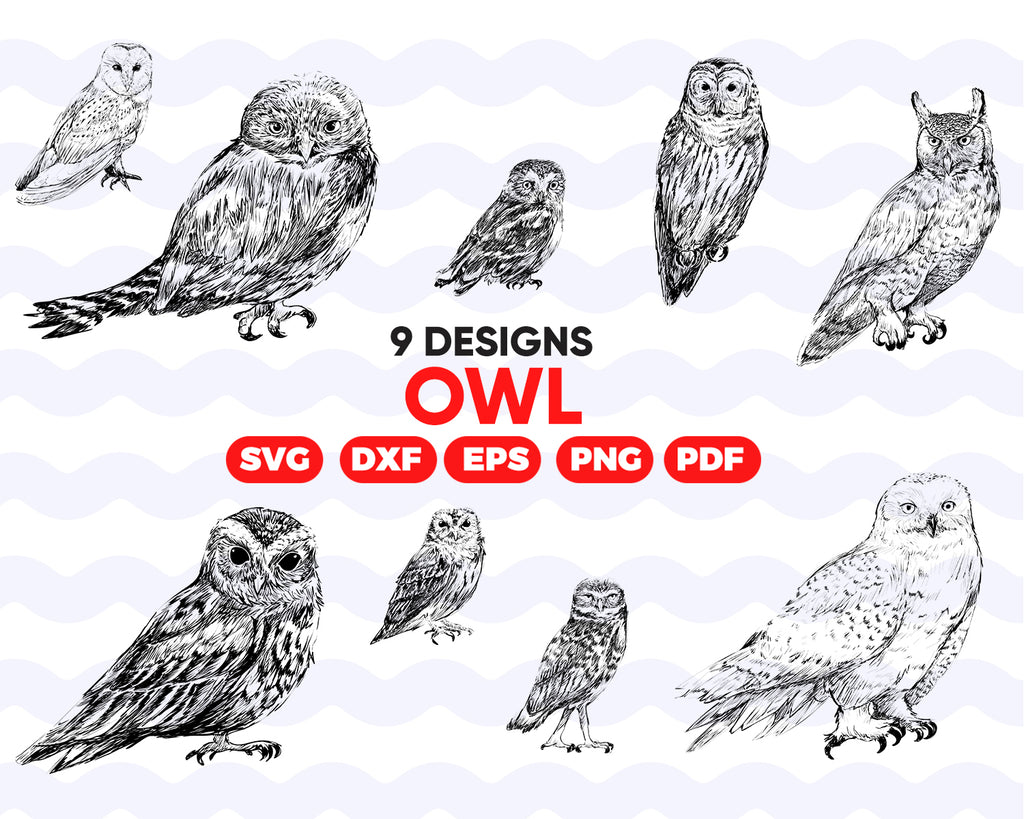 Owl SVG Bundle, Birds SVG bundle, Owl cut file, Owl clipart, Owl svg files for silhouette, Owl files for cricut, Owl svg, Owl dxf, eps, png