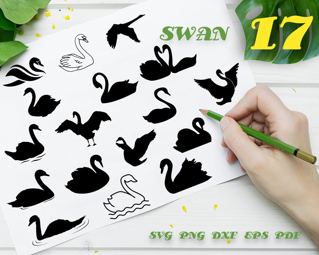 SWAN SVG, Swan Bundle, Swan Vector, Swan Clipart, Swan Cut Files For Silhouette, Files for Cricut, Swan Vector, Cygnini Svg, Dxf, Png, Swan Digital Design, Instant Download