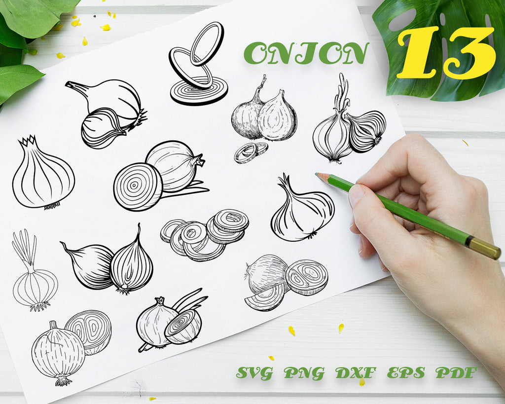 Onion SVG, Vegetable Svg, Onion Clipart, Onion Files for Cricut, Onion Cut Files For Silhouette, Onion Dxf, Onion Png, Onion Eps, Vector Digital File