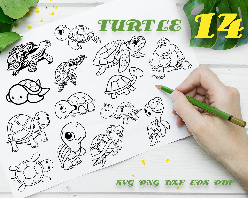 TURTLE SVG/ tortoise svg/ sea svg/ aquatic svg/ reptile svg/ clipart/ silhouette/ decal/ stencil/ vinyl/ cut file/ vector/ digital design