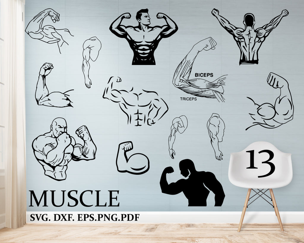 Muscle svg, muscles digital File, Gym, Fitness, Commercial & Personal Use, Cricut, Silhouette, vector, design