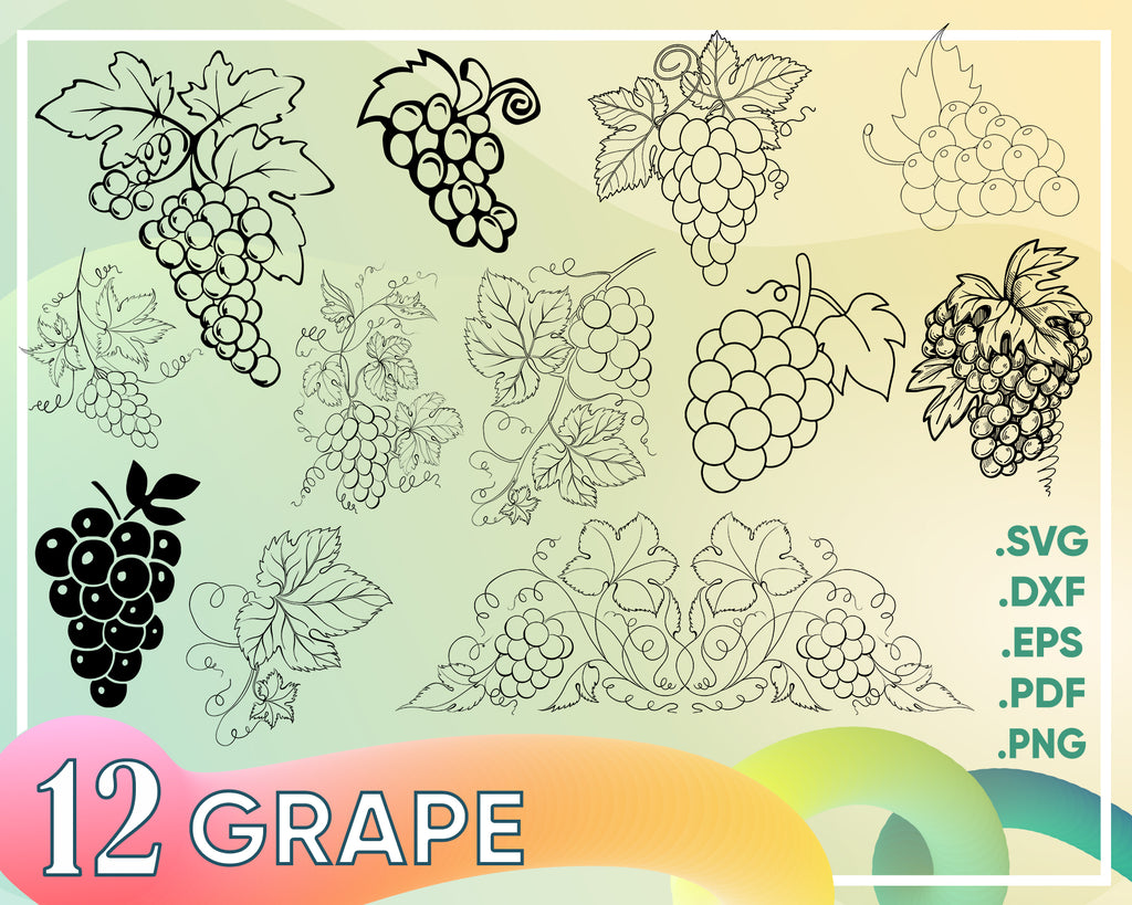 Grapevine Vector. Grapevine Laser Pattern. Vine SVG Silhouette. Vine & Grape Cricut File. Laser Cut Template Vine. Wine Vector. Wine Pattern