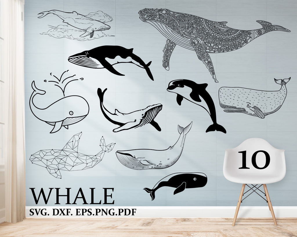 Whale svg, whale clipart, Cricut, Cut file, Silhouette, Files for Cricut, Whale Vector, Clipart, Svg, Dxf, Png, Pdf, Eps