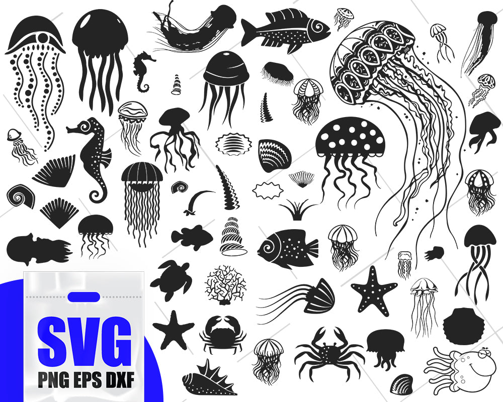Jellyfish svg, ocean svg bundle, under the sea svg, seashell svg, beach svg, shell svg, ocean animals svg, shells clipart, sea shell cut files